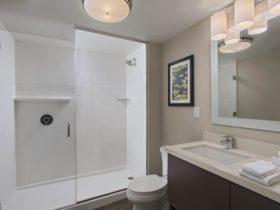 TPS LC – Bathroom 2